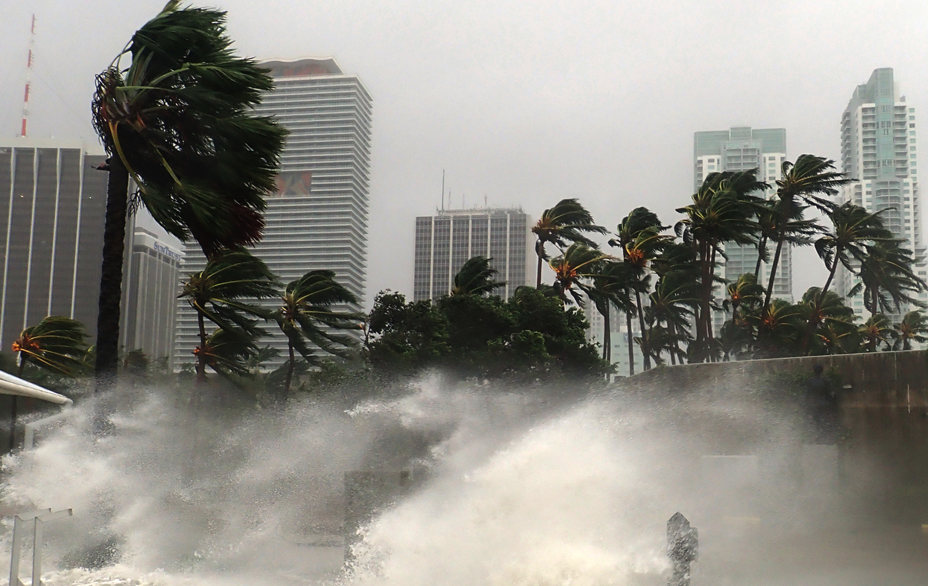 Hurricane impacts being felt along the Miami coastline. Waves crashing onshore, palm trees blowing in high winds.