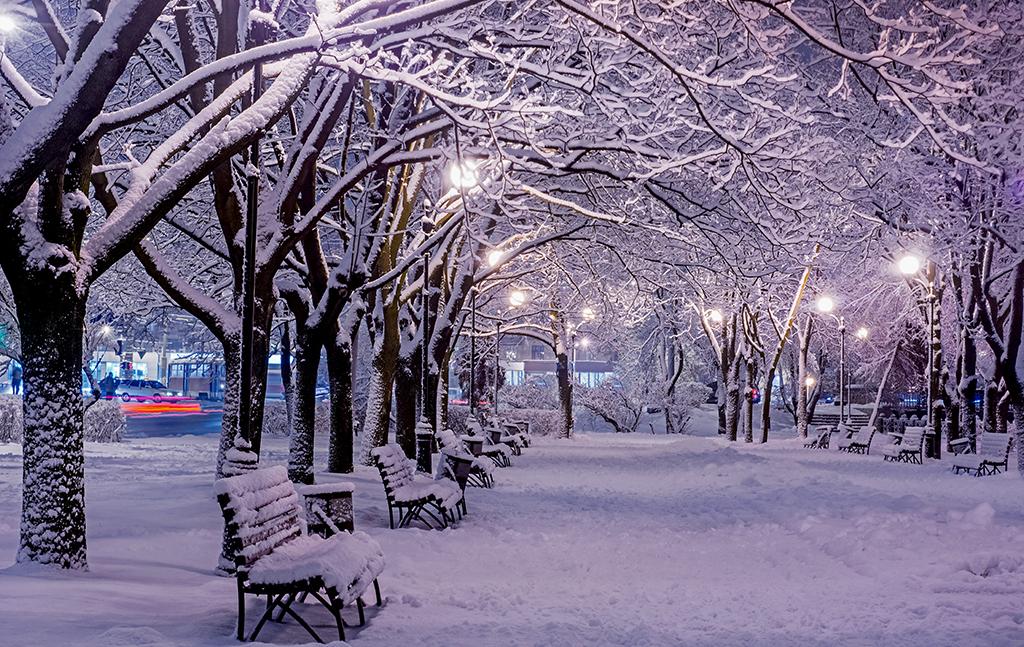 Winter Webinar